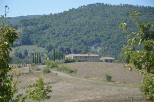 pagina_statiano_agricola_header_2